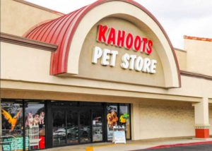 Kahoots Pet Adoption Event