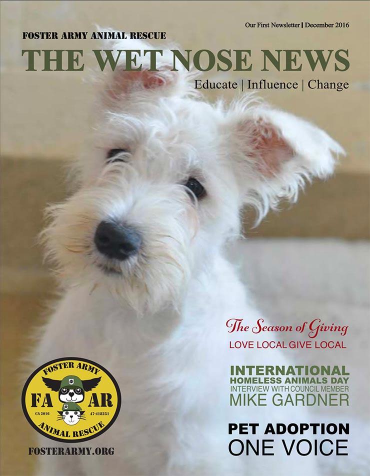 Wet Nose News December 2016