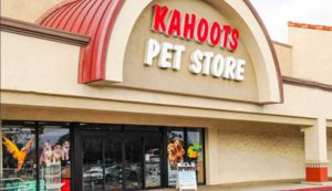 Foster Army Pet Adoption at Kahoots Pet Store