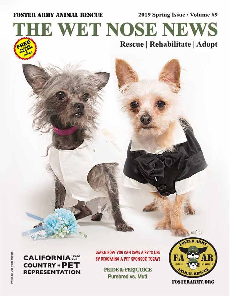 Image: Wet Nose News Spring 2019 for Foster Army Animal Rescue
