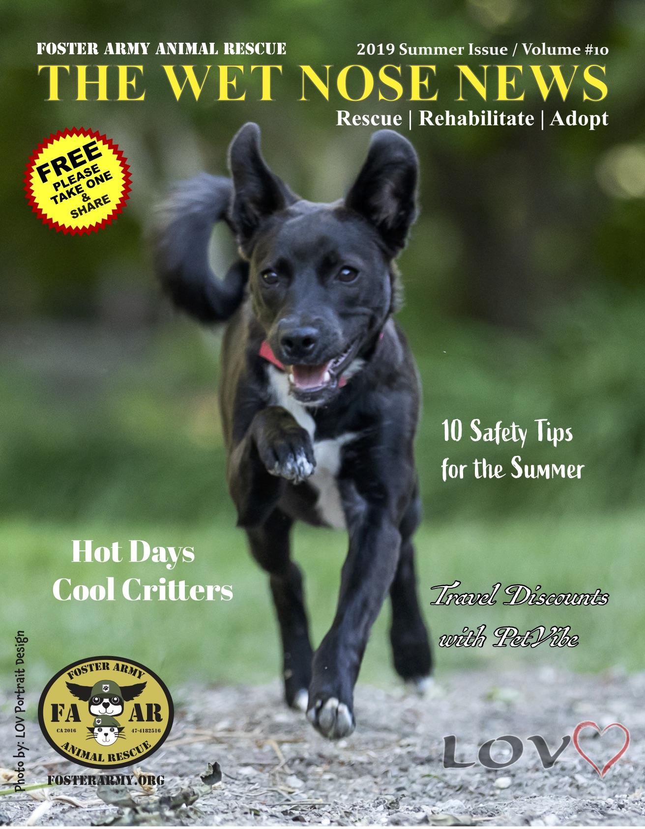 FAAR Newsletter 6.17.19 Cover
