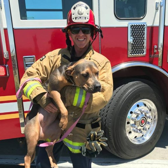 Foster Army Donations - Fire Department with Dog
